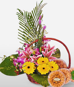 Regal Celebrations-Pink,Yellow,Daisy,Gerbera,Lily,Basket,Hamper