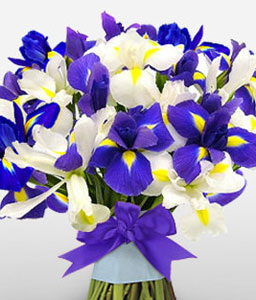 Seaside Magic-Blue,White,Iris,Bouquet