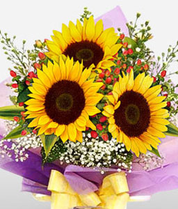 Summer Holiday-Yellow,SunFlower,Bouquet