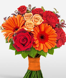 Myriad Majesty-Mixed,Orange,Peach,Red,Daisy,Gerbera,Bouquet