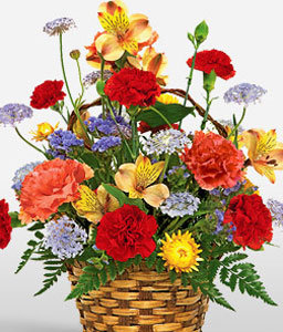 Carnival Of Color-Mixed,Purple,Red,Yellow,Alstroemeria,Carnation,Mixed Flower,Arrangement,Basket
