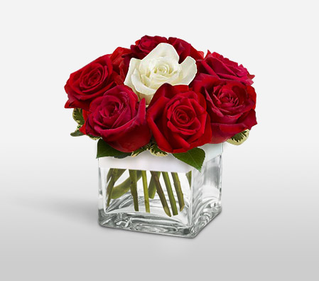 Flaming Reds And Innocent Whites <Br><Font Color=Red>Complimentary Vase</Font> <Br><Font Color=Red>Sale $10 Off</Font>