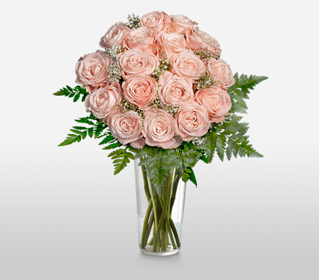 Freya <br>18 Rosita Vendela Roses<br><font color=red>Sale $10 Off + Tall clear Free Vase</font>