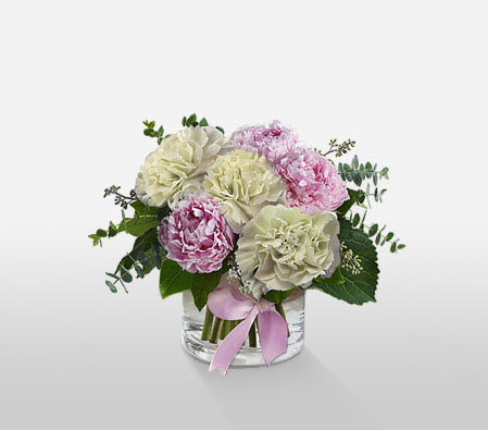 Carnations And Peonies <Br><Font Color=Red>Complimentary Vase</Font>