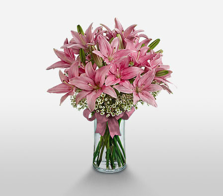 Lilies Blushing <Br><Font Color=Red>Complimentary Vase</Font>
