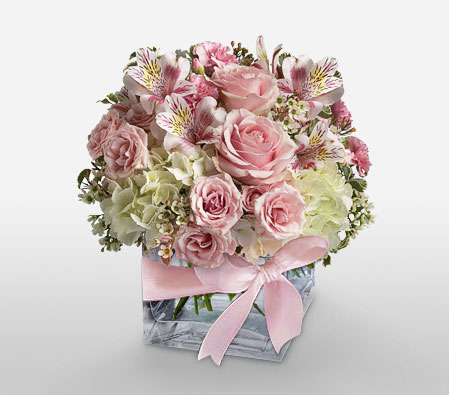 Rosa Elegancia-Pink,Carnation,Hydrangea,Mixed Flower,Rose,Alstroemeria,Arrangement