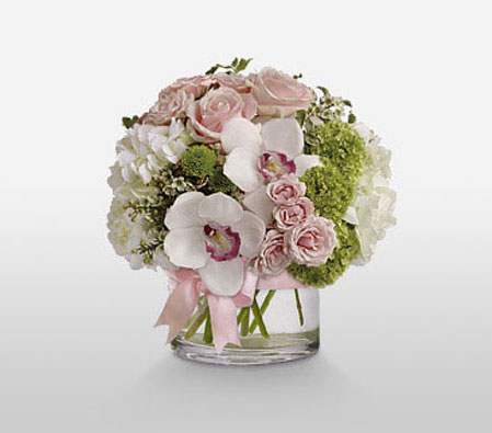 Stylish Arrangement <Br><Font Color=Red>Complimentary Vase</Font>