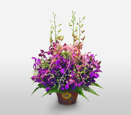 Purple Orchid Basket