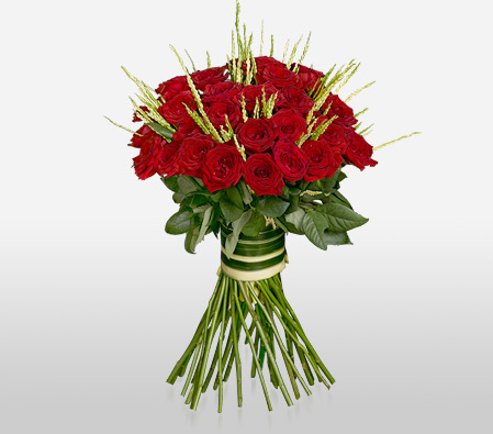 Roseate Glow Red<br><font color=red>Two Dozen</font>