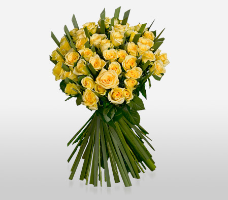 Supernova  Yellow <Br><Font Color=Red>Two Dozen Yellow Roses </Font>