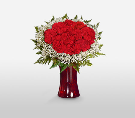 Circle Of Love <font color=red> Red Carnations Arrangement </font>