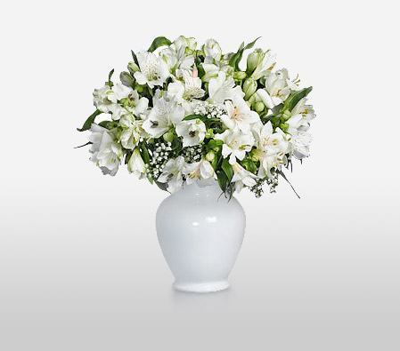 Soulful <Br><Font Color=Red>Complimentary White Vase </Font>