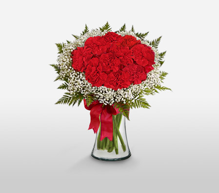 Sweetheart<Br><Font Color=Red>Dozen Red Carnations</Font>