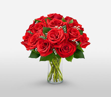 Bewitched - 12 Red Roses in Vase-Red,Rose,Arrangement