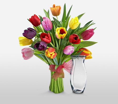 Tulip Sensation <Font Color=Red>$10 Off With Free Vase & Chocolates </Font>