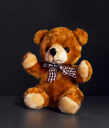 Teddy Love (6 Inch)