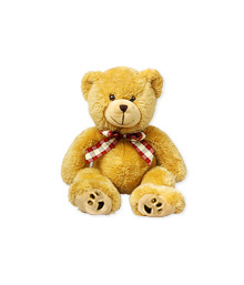 Teddy Bear (Medium)