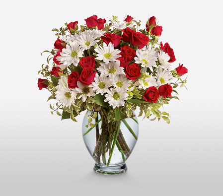 Roses And Daisies-Red,White,Rose,Chrysanthemum,Daisy,Arrangement