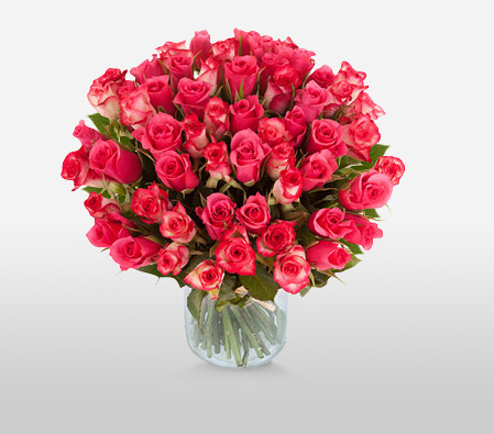 Passionate Pink <Font Color=Red>40 Pink Roses <Br>Sale $15 Off </Font>