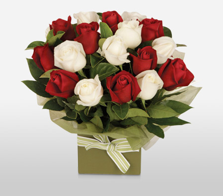 Romantic Red N White Roses