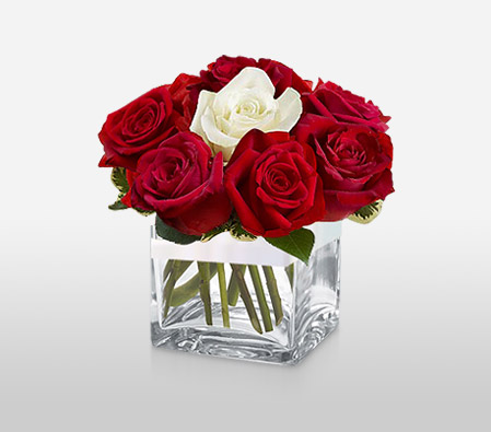 Red N White Roses In Cube-Red,White,Rose,Arrangement