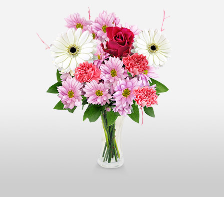 Ballerina-Pink,White,Carnation,Gerbera,Rose,Bouquet