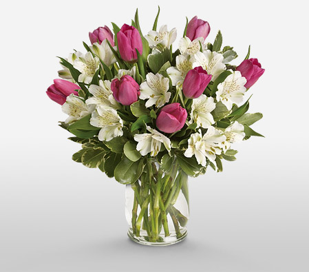 Sweet Notions <Br><Font Color=Red>Complimentary Vase </Font>