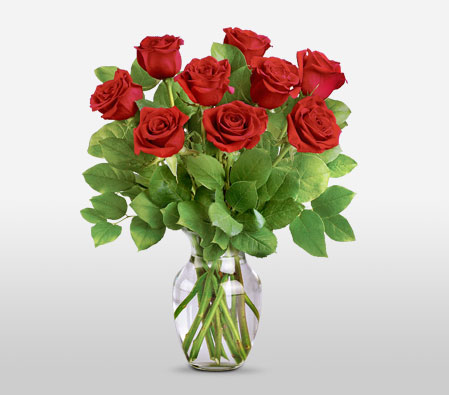 Long Stemmed Red Roses - 9 Roses