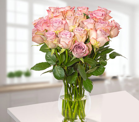 Wonderful Light Pink Roses