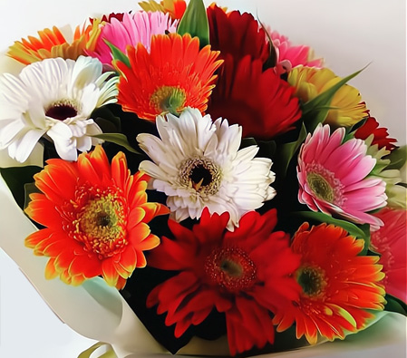 Bouquet of Colorful Gerberas