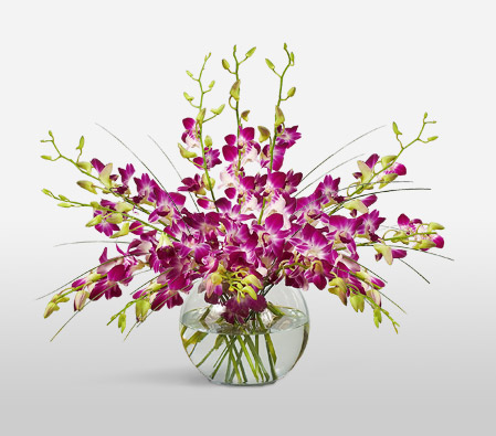 Purple Drops <Br><Font Color=Red>Complimentary Vase </Font>
