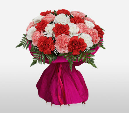 Delightful Carnations