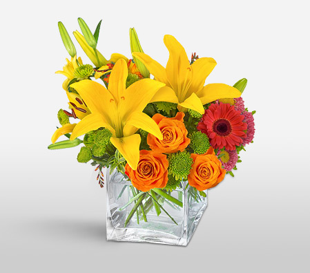 Imaginary <Br><Font Color=Red>Mixed Bright Flowers - Complimentary Vase</Font>