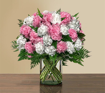 Twinkling Ardor - Pink and White Carnations