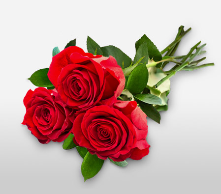 Troika Of Romance --Red,Rose,Bouquet
