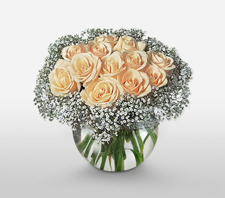 Sparkling Light <Br><Font Color=Red>One Dozen Roses</Font>
