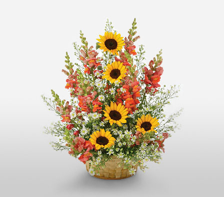 Sunrise Surprise-Mixed,Orange,White,Yellow,Mixed Flower,SunFlower,Arrangement