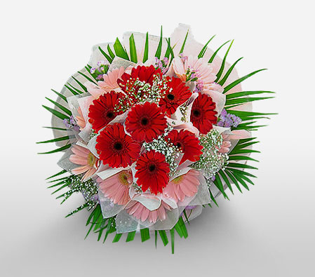 Thinking Of You <Br><Font Color=Red>Red & Pink Gerberas</Font>