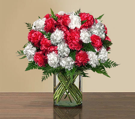 Full Of Love-Red,White,Carnation,Bouquet