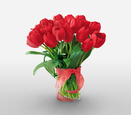 Vivacious Tulips <Br><Font Color=Red>Sale $5 Off </Font>