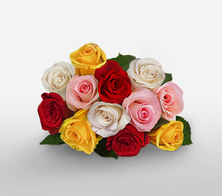 Alluring Dream <br><font color=red>12 Mixed Roses</font>