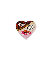 Dove Chocolate 109g