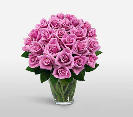 Glowing Pinks<Br><Font Color=Red>Two Dozen Roses - Sale $10 Off</Font>