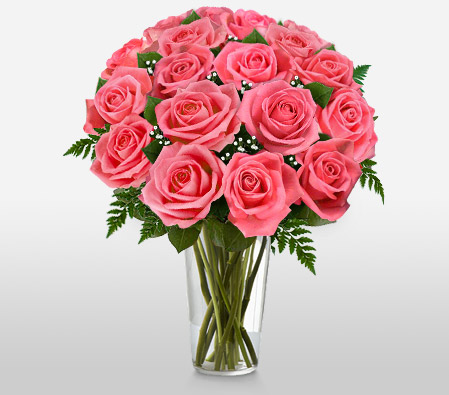 Perfect Pink Roses 12 Roses + 8 Free
