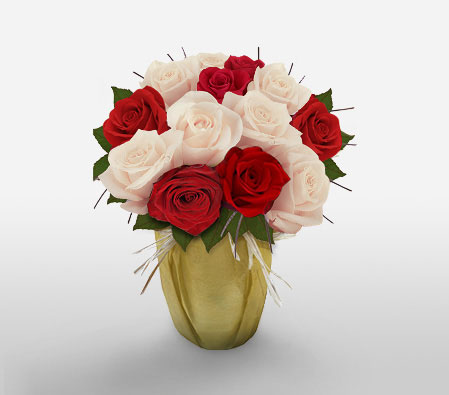 Beauty All Over <Br><Font Color=Red>One Dozen Roses</Font>
