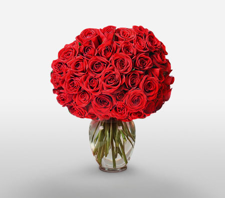 Scarlet Poise <Br><Font Color=Red>50 Long Stem Roses</Font>