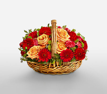 Warm Glow-Mixed,Orange,Red,Carnation,Gerbera,Mixed Flower,Rose,Arrangement,Basket