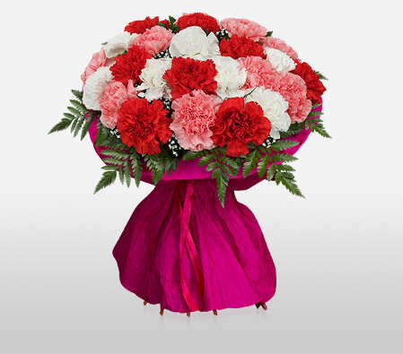 MUMbelievable-Mixed,Pink,Red,White,Carnation,Bouquet