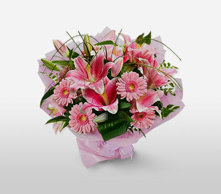 Poetic Chimes - Pink Flowers-Pink,Gerbera,Lily,Bouquet