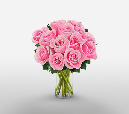 Dozen Pink Roses <span>Complimentary Vase </span>